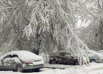 Сильные снегопады с ледяным дождем и гололедом